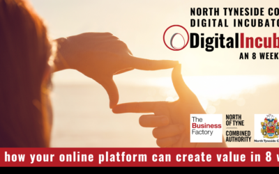 Digital Incubator 8 week course launched